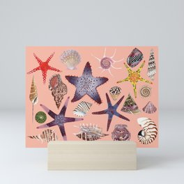 SEASHELLS & STARFISH (LIGHT PINK) Mini Art Print