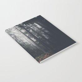 Dark paths Notebook