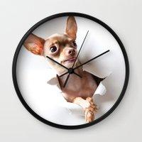 chihuahua Wall Clocks featuring Chihuahua by Brigitta