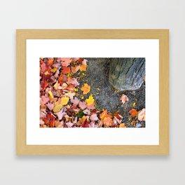 Fallen to the Ground Framed Art Print