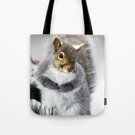 Winter Squirrel Tote Bag