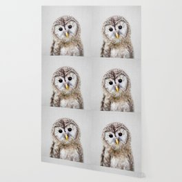 Baby Owl - Colorful Wallpaper