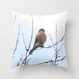 Sparrowhawk (Kestrel) 2 Throw Pillow
