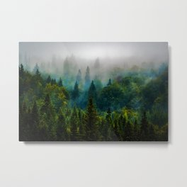 forest redone Metal Print