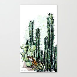Cactus Long and a friend Canvas Print