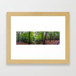 Forest Landscape Framed Art Print