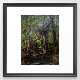 Big Island Nature Framed Art Print