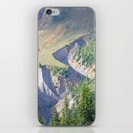 SWIFT CREEK HEADWATERS BELOW TABLE MOUNTAIN iPhone Skin