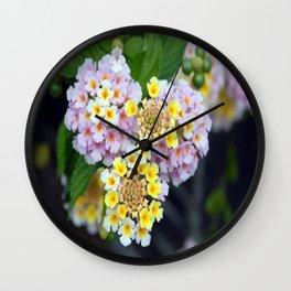 Tropical Plant Lantana Camara or West Indian Lantana Wall Clock