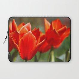 Tulips in spring Laptop Sleeve