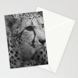 Cheetah Black & White Stationery Cards