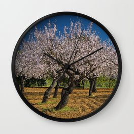 Almond orchard in Portugal Wall Clock