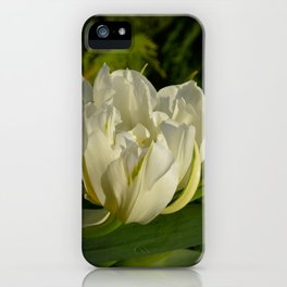 Double White Tulip by Teresa Thompson iPhone Case