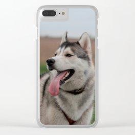 Siberian Husky sled dog Clear iPhone Case