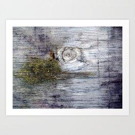 Eye of the Barn Art Print