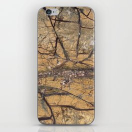Marble Rain Forest Gold iPhone Skin