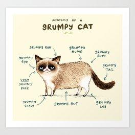Anatomy of a Grumpy Kitty Art Print