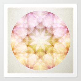 Colorful Petals Art Print