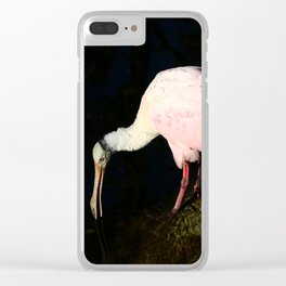 Roseate Spoonbill Pose Clear iPhone Case