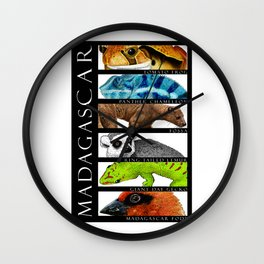 Animals of Madagascar Wall Clock