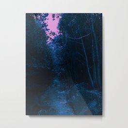 0413 Metal Print