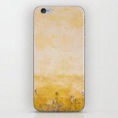 Vintage Wall iPhone & iPod Skin