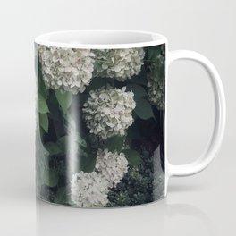 Garden Flowers Hydrangeas White Green Summer Beauty Nature Photography Coffee Mug