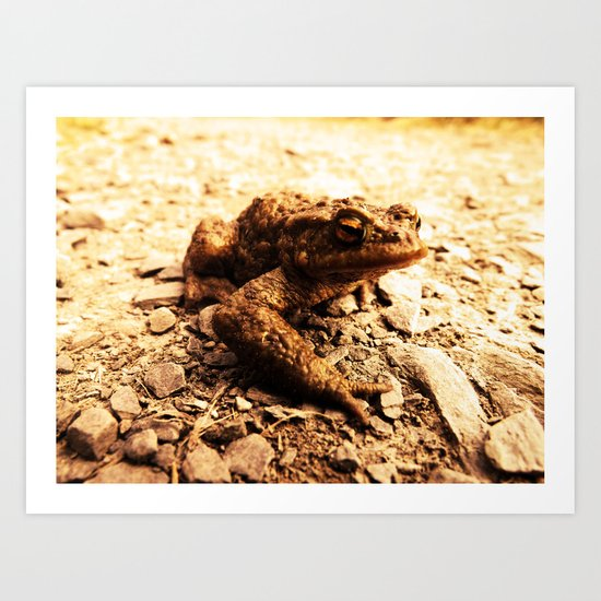 Resident Of Toad Hall Art Print