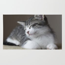 Jack - Kitten Portrait #3 (2016) Rug