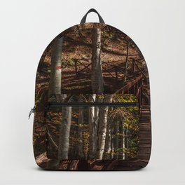 Wooden bridge crosses the forest lit by the autumn sun Backpack