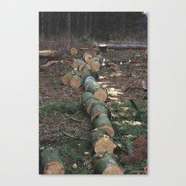 log line Canvas Print