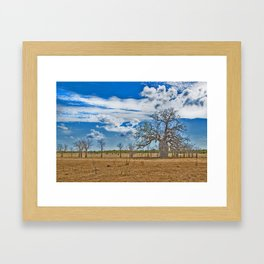Build up and Boab Framed Art Print