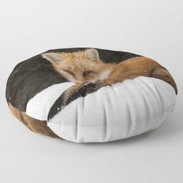 Artic Fox Floor Pillow