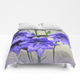 Star Beauty in Blue Comforters