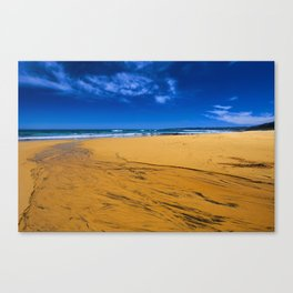 Clear Stream to the sea Canvas Print