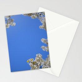 knock around Stationery Cards