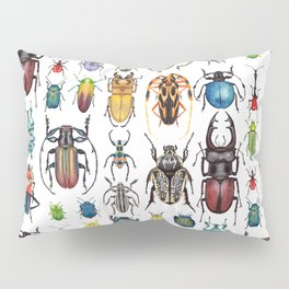 Beetle Collection Pillow Sham