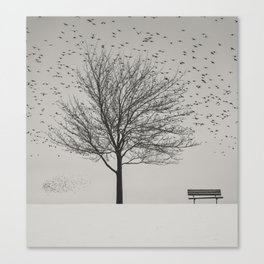 Feathered Branches Canvas Print