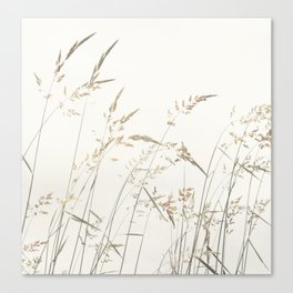 Field Grass Canvas Print