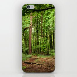 Glade of my Dreams  iPhone Skin