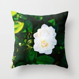 Oklahoma Blooms II Throw Pillow