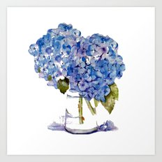 Cape Cod Hydrangea Large Canvas Art Print