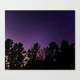 Stars view from the forest Canvas Print
