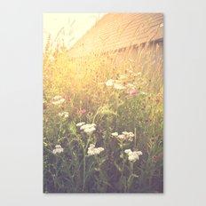 Boho Summer Sunshine Canvas Print