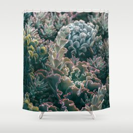 Mornings In The Succulent Garden #1 Shower Curtain