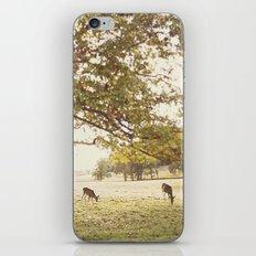 The Forge iPhone & iPod Skin
