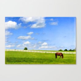 Summer Grazing Canvas Print