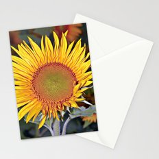 Floating SUN Stationery Cards