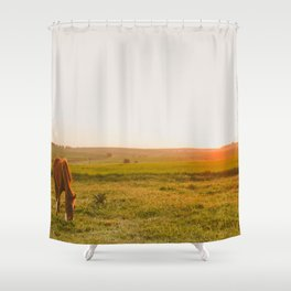 Summer Landscape with Horse Shower Curtain