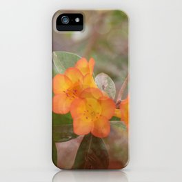 Orange you Beautiful iPhone Case